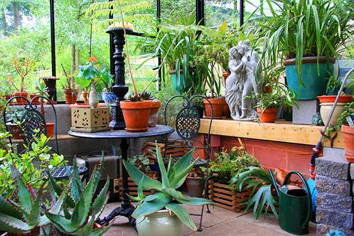 Výsledok vyhľadávania obrázkov pre dopyt obrázky na zimnu záhradu a kvetmi